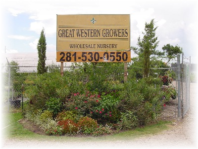 Great Western Growers Inc Offers No Warranty Or Guarantees On Plant Material However We Try To Give The Best Advice How Take Care Of Your So